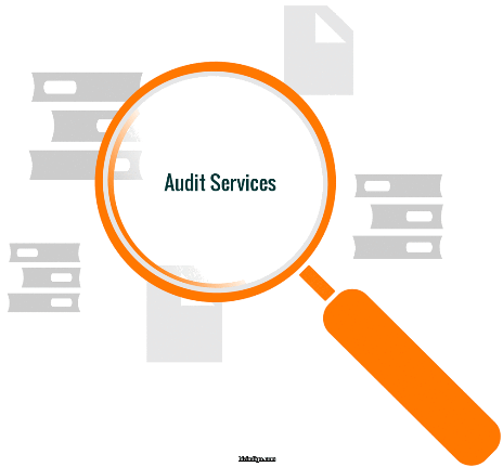 stock audit services