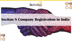 section-8-company-registration-india-bizindigo-fi