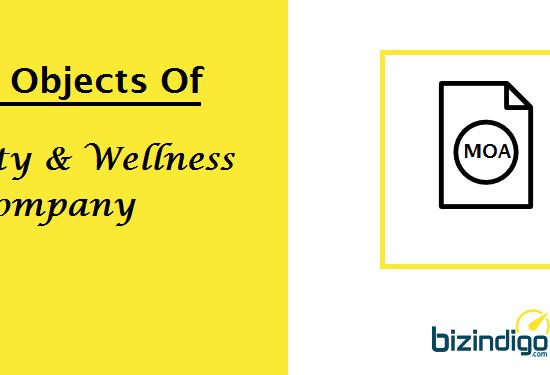 main-objects-beauty-wellness-company-bizindigo